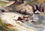 Point Lobos—Carmel